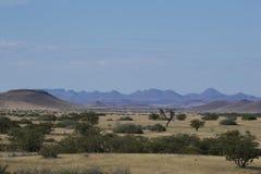 Sikt över det Palmwag medgivandet Arkivfoto