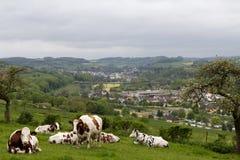 Sikt över ett fält i Luxembourg Fotografering för Bildbyråer