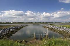 Sikt över flodhopkrupna ställningen från den Wallasea ön, Essex, England Arkivfoto