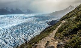 Sikt över Grey Glacier i den Torres del Paine nationalparken i Chile Arkivbilder