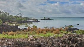 Sikt över haurakigolf från den Rangitoto ön royaltyfri bild