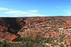 Sikt över klyftan Kalbarri NP under blå himmel i västra Australien Arkivbilder