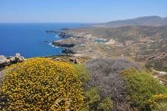 Sikt över kust- landskap av den grekiska ön Mykonos i våren, Grekland Royaltyfri Fotografi
