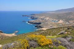 Sikt över kust- landskap av den grekiska ön Mykonos i våren, Grekland Royaltyfri Bild