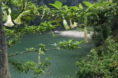 Sikt över Phewa sjön, Pokhara i Nepal Arkivbilder
