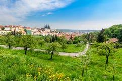 Sikt över Prague från den Strahov kloster Fotografering för Bildbyråer