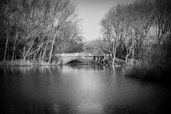 Sikt över sjön till bron Arkivbilder