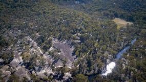 Sikt över skog i Australien Arkivfoton