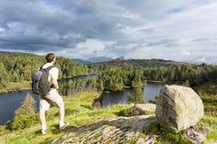 Sikt över Tarn Hows på engelskt område för Lake Arkivfoton