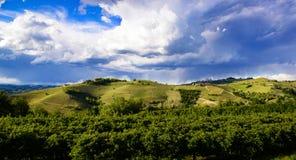 Sikt över vingårdarna och de Langa kullarna under en åskväder Royaltyfria Bilder