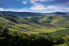 Sikt över vingårdarna och de Langa kullarna under en åskväder Fotografering för Bildbyråer