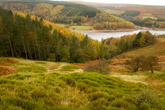 Sikt across till den Derwent dalen Royaltyfri Foto