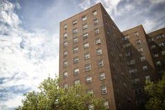 Sikt av åtskilliga generiska hyreshusar som ses i Manhattan, NYC Fotografering för Bildbyråer