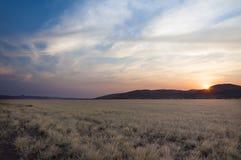 Sikt av öknen i Sossusvlei, Namibia Arkivfoton