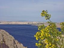 Sikt av ön l Rab royaltyfria bilder