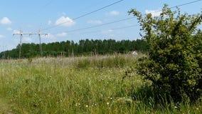 Sikt av överföringslinjer från grässlätt stock video