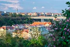 Sikt av aftonen Prague från Vyshehrad (Tjeckien) Arkivfoto