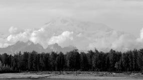 Sikt av Alaska område från floden i Talkeetna Arkivbilder