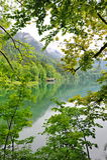 Sikt av Alpsee sjön i Tyskland Royaltyfri Fotografi