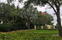 Sikt av amerikanska flaggan med stjärnor och band framme av palmträden på en grön gräsmatta under en blå himmel med moln i Naples Arkivfoton