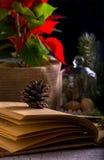 Sikt av anteckningsboken av gullig julgarnering, kottar, granträd Arkivfoton