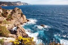 Sikt av att svalla havet bland klippor med blommor Royaltyfri Bild