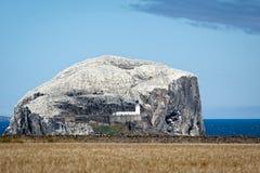Sikt av Bass Rock i firthen av framåt royaltyfria bilder