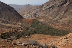 Sikt av behållaren och bergen i Betancuria Arkivfoton