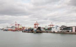 Sikt av behållareskepp och kryssningeyeliner på Dublin port i Irland royaltyfri bild