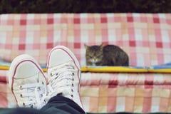 Sikt av ben och en katt på gunga Arkivbild
