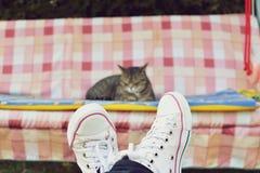 Sikt av ben och en katt på gunga Royaltyfri Foto