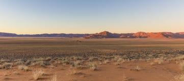 Sikt av berg för lantgård Gunsbewys och Tiras i sydliga Namibia Arkivbilder