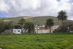Sikt av berg och den palmträdBetancuria Fuerteventura kanariefågeln Royaltyfri Fotografi