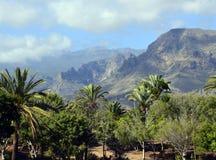 Sikt av berg och palmträd mot blå himmel Arkivfoto