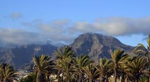 Sikt av berg och palmträd mot blå himmel i Tenerife, kanariefågelöar Royaltyfri Bild