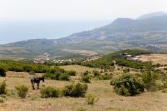 Sikt av bergen Arkivfoto