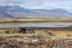 Sikt av bergen iceland Fotografering för Bildbyråer