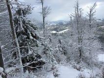 Sikt av berget i vinter Fotografering för Bildbyråer