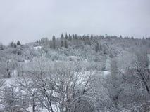 Sikt av berget i vinter Arkivfoto