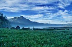 Sikt av berget och Paddy Field Royaltyfri Bild
