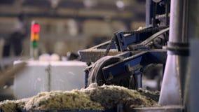 Sikt av bitande maskineri på sågverket stock video