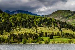 Sikt av Bohinj sjön i den Triglav nationalparken Slovenien Royaltyfria Bilder