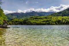 Sikt av Bohinj sjön i den Triglav nationalparken Slovenien fotografering för bildbyråer
