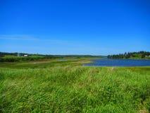 Sikt av breda flodmynningen från sjösidaäng Royaltyfri Fotografi
