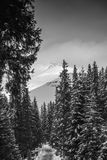 Sikt av Bucegi berg Royaltyfria Bilder