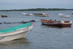 Sikt av cayoen och havet mot en blå himmel i den Morrocoy nationalparken arkivbilder