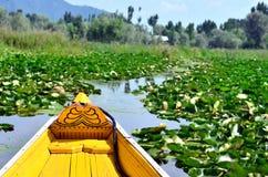 Sikt av Dal sjön från Shikara royaltyfri foto