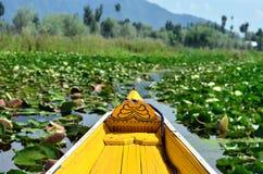 Sikt av Dal sjön från Shikara royaltyfria bilder