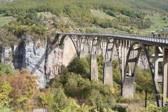 Sikt av dalen av den Tara floden och den berömda för `-urÄ för bro Ä ‡en för eviÄ för ` som en Tara överbryggar i Montenegro Arkivfoton
