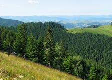 Sikt av de Carpathian bergen Arkivbild